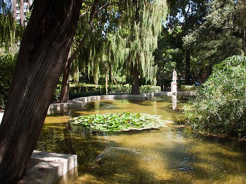 jardi-de-monfort